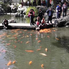 Foto 34 de 80 de la galería fotos-tomadas-con-el-xiaomi-mi-mix-2 en Xataka