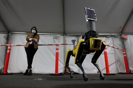 Boston Dynamics Perro