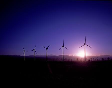 Oaxaca es un gigante en energía eólica, en Juchitán se estrenó el parque eólico más grande de México y América Latina