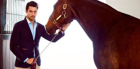 David Gandy equestrian collection
