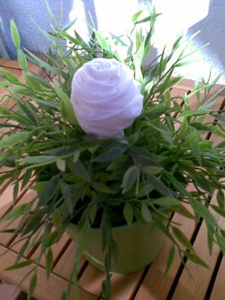 Regalos decorativos para San Valentín: rosas de papel higiénico
