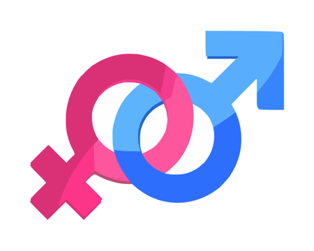 Gender 312411 960 720