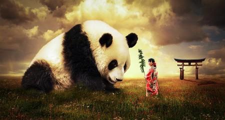 Panda 2987596 960 720