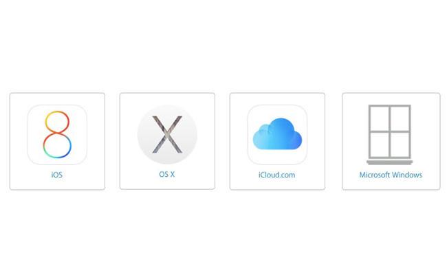 Windows Logo Apple