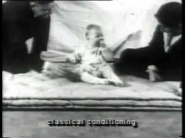 Demostrado: con el conductismo puedes manipular a tu hijo