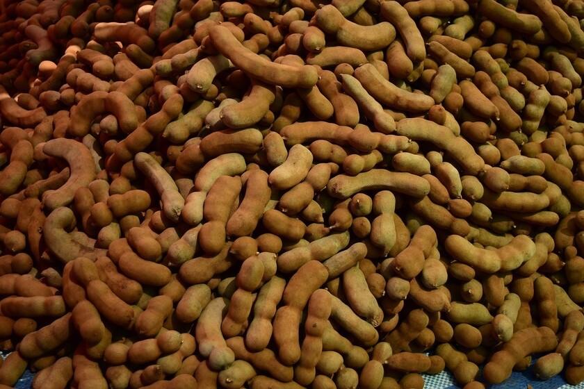 Tamarindo: la historia de la fruta africana que llegó a México y se convirtió en una de las claves para los dulces tradicionales