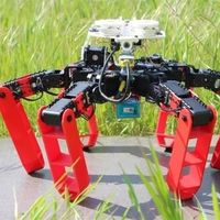 Este robot es capaz de orientarse sin hacer uso de un GPS