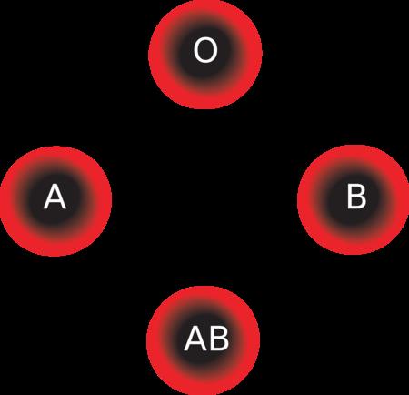 Grupo Sanguineo