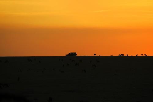 Compañeros de Ruta. De Kenia a las Seychelles con escala en Albacete