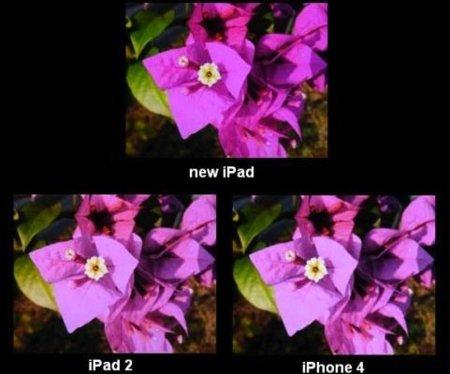 La pantalla del iPad se posiciona como una de las mejores del mercado