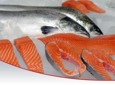 Nutrición durante el embarazo: alimentos ricos en Omega-3