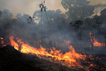 Pese al drama del Amazonas, los incendios globales se han reducido un 25% en las últimas décadas