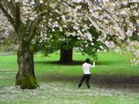 Ejercicio para los mayores: tai chí
