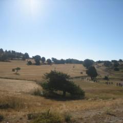 Foto 8 de 35 de la galería sierra-de-albarracin en Diario del Viajero