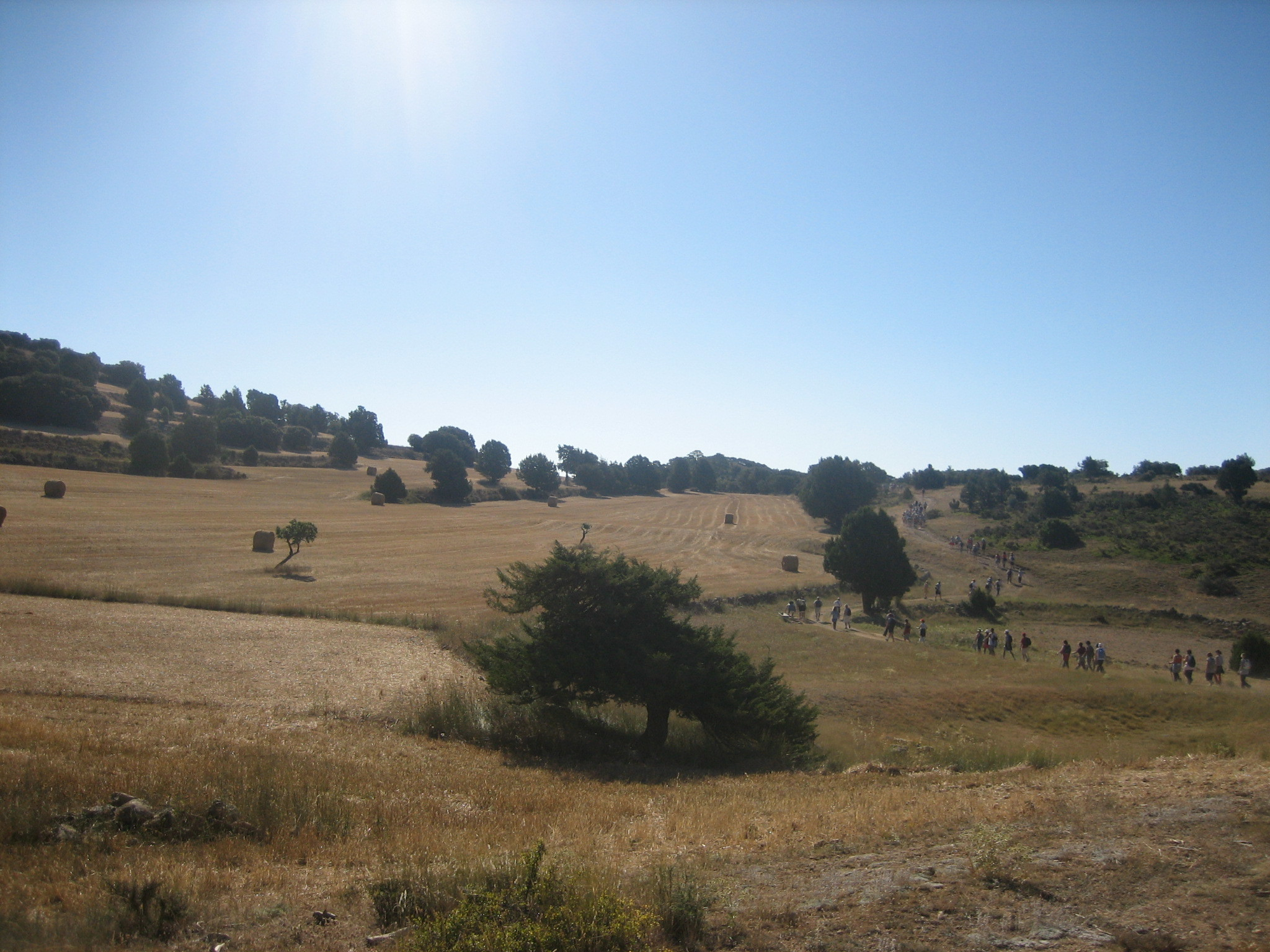 Foto de Sierra de Albarracín (8/35)