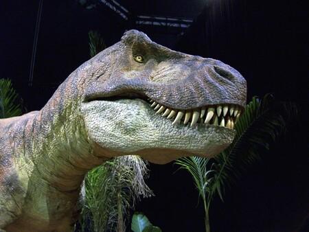 """El """"Tyrannosaurus rex"""" andaba bastante más lento de lo que pensábamos: casi más que un humano, según este estudio"""