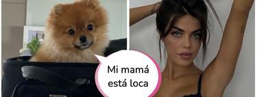 Violeta Magriñán celebra sus 27 tacos con este capricho: un accesorio para su perra que cuesta 2.000 pavos