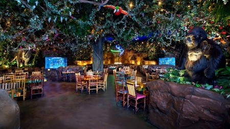 Rainforest Cafe Animal Kingdom Gallery01