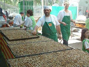 Lleida: Caracoles a toneladas