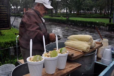 Radiografia Esquites Elote En Vaso Comida Maiz Mexico Elotero