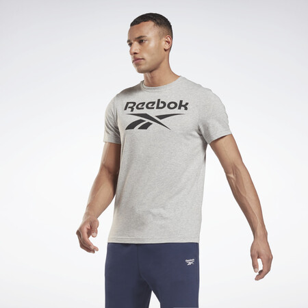 Camiseta Graphic Series Reebok Stacked Gris Gs1614 01 Standard