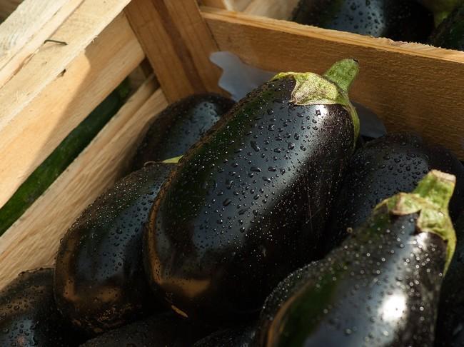 Eggplant 1707629 1280