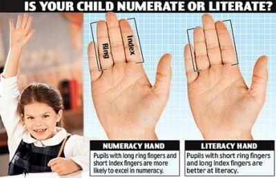 Los niños con el dedo anular más largo que el índice son mejores en matemática