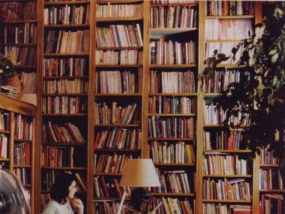 ¿Te comen los libros? Mira estas 9 ideas para tenerlos perfectos