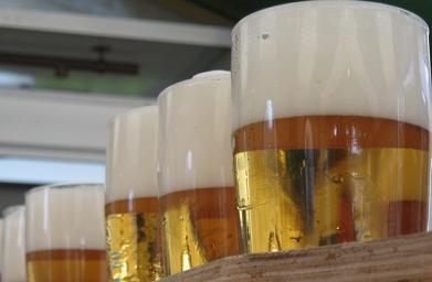 Cerveza elaborada con cebada modificada genéticamente, ¿una buena opción?