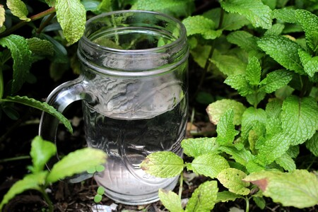 Siete beneficios para la salud de beber suficiente agua