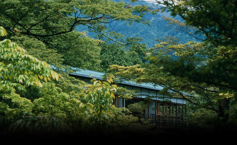Gora Gora Kadan Hotel, Hakone