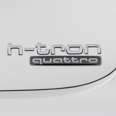 Foto 27 de 49 de la galería audi-a7-sportback-h-tron-quattro en Motorpasión