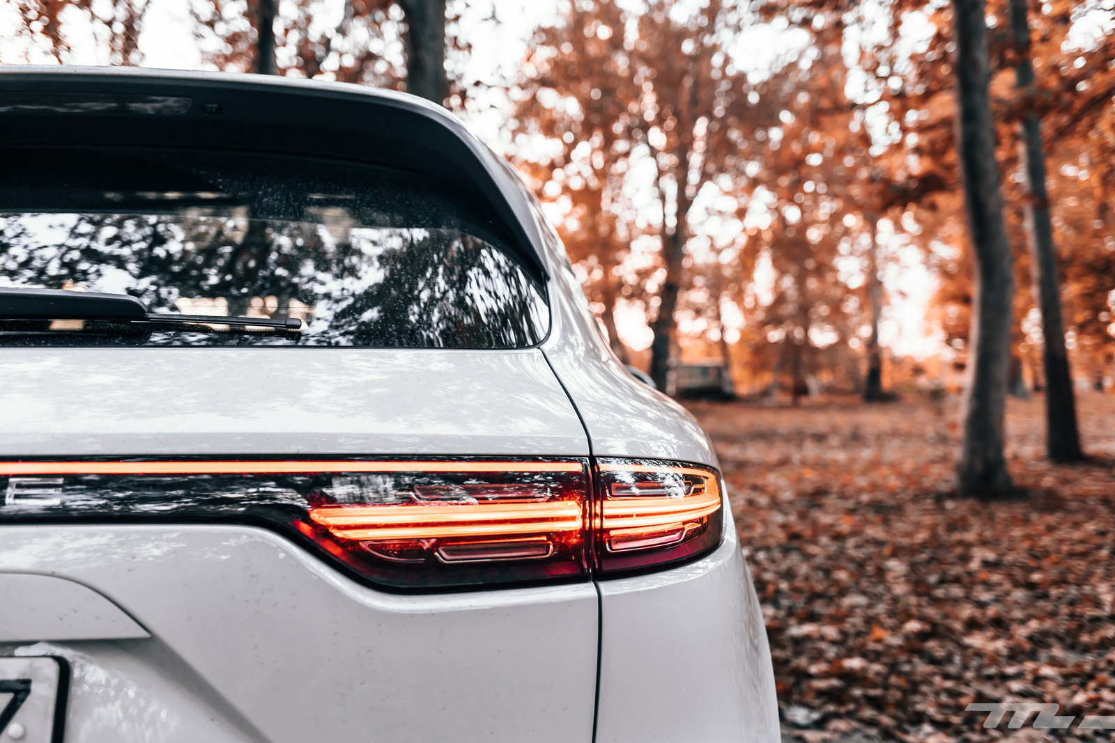 Foto de Porsche Cayenne S (prueba) (15/33)