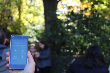 Identifica árboles con esta app: Arbolapp