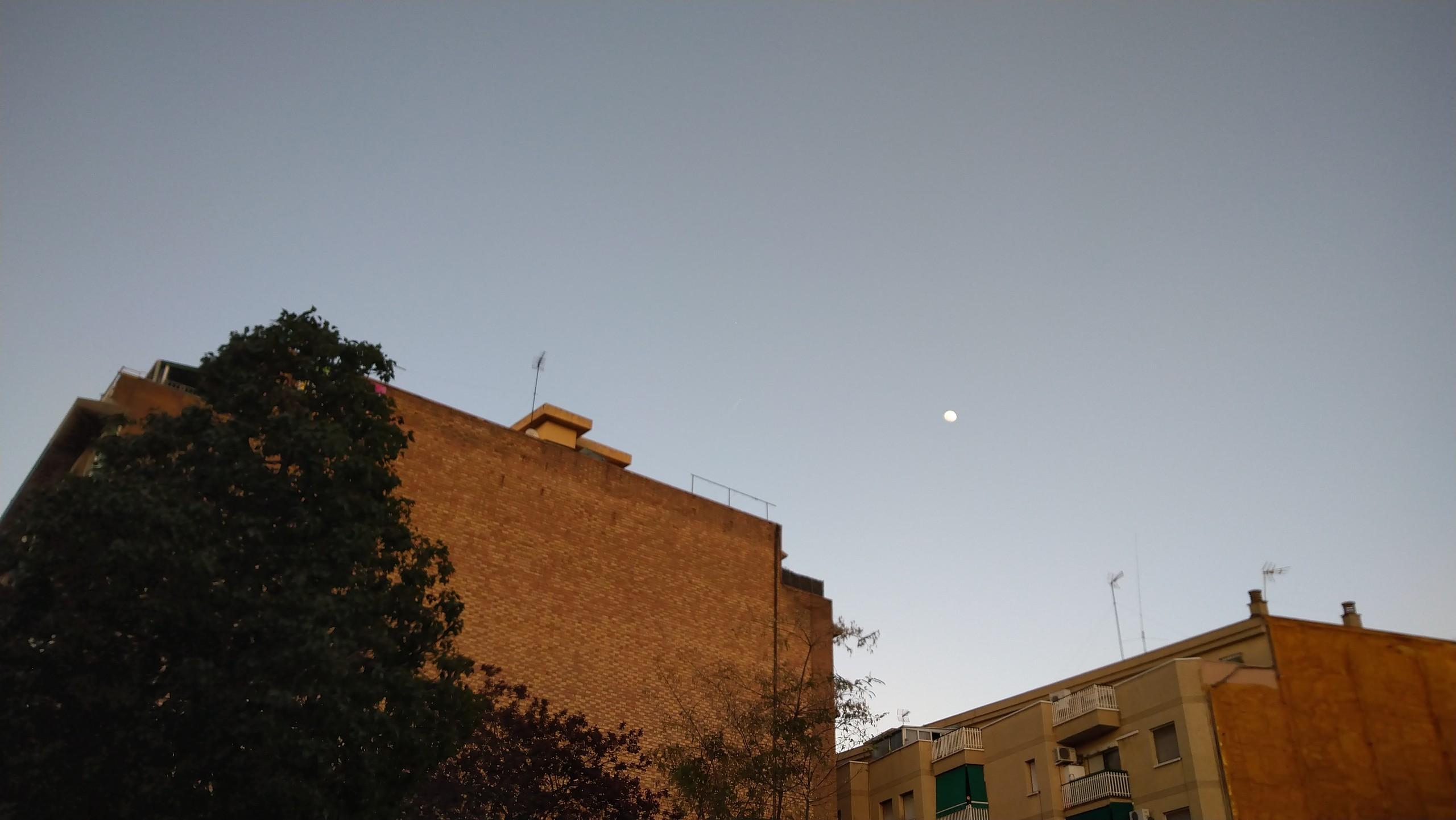 Foto de Imágenes del Xperia 10 (24/47)