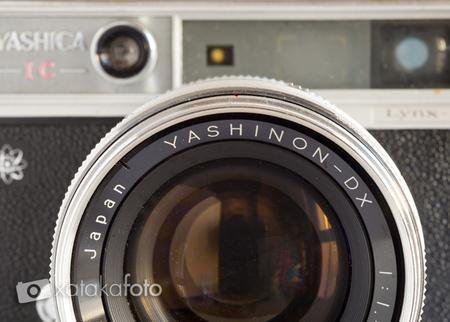 yashinon