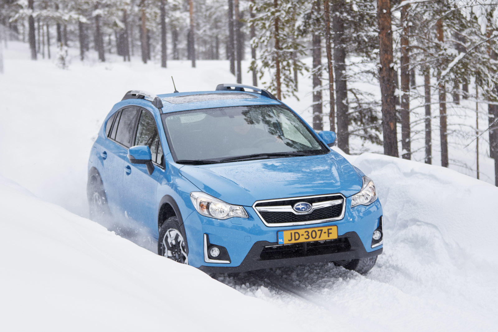 Foto de Subaru Snow Drive 2016 (120/137)