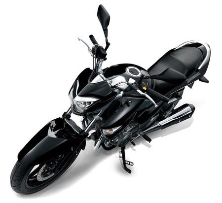 Suzuki Izuma 250