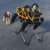 El perro robot de Google vuelve a salir a la calle y conoce a Alex, el perro de Andy Rubin