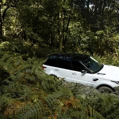 Foto 4 de 40 de la galería land-rover-range-rover-sport-2018 en Motorpasión México