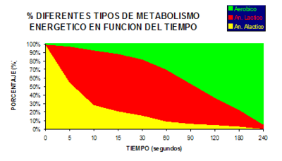 Ejercicio aeróbico y anaeróbico: diferencias y beneficios