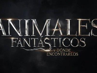 Animales Fantásticos y Dónde Encontrarlos, la vuelta al cine del universo Harry Potter