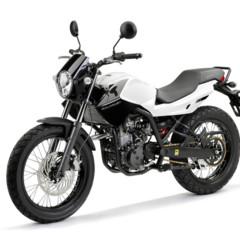 Foto 9 de 10 de la galería derbi-mulhacen-125 en Motorpasion Moto
