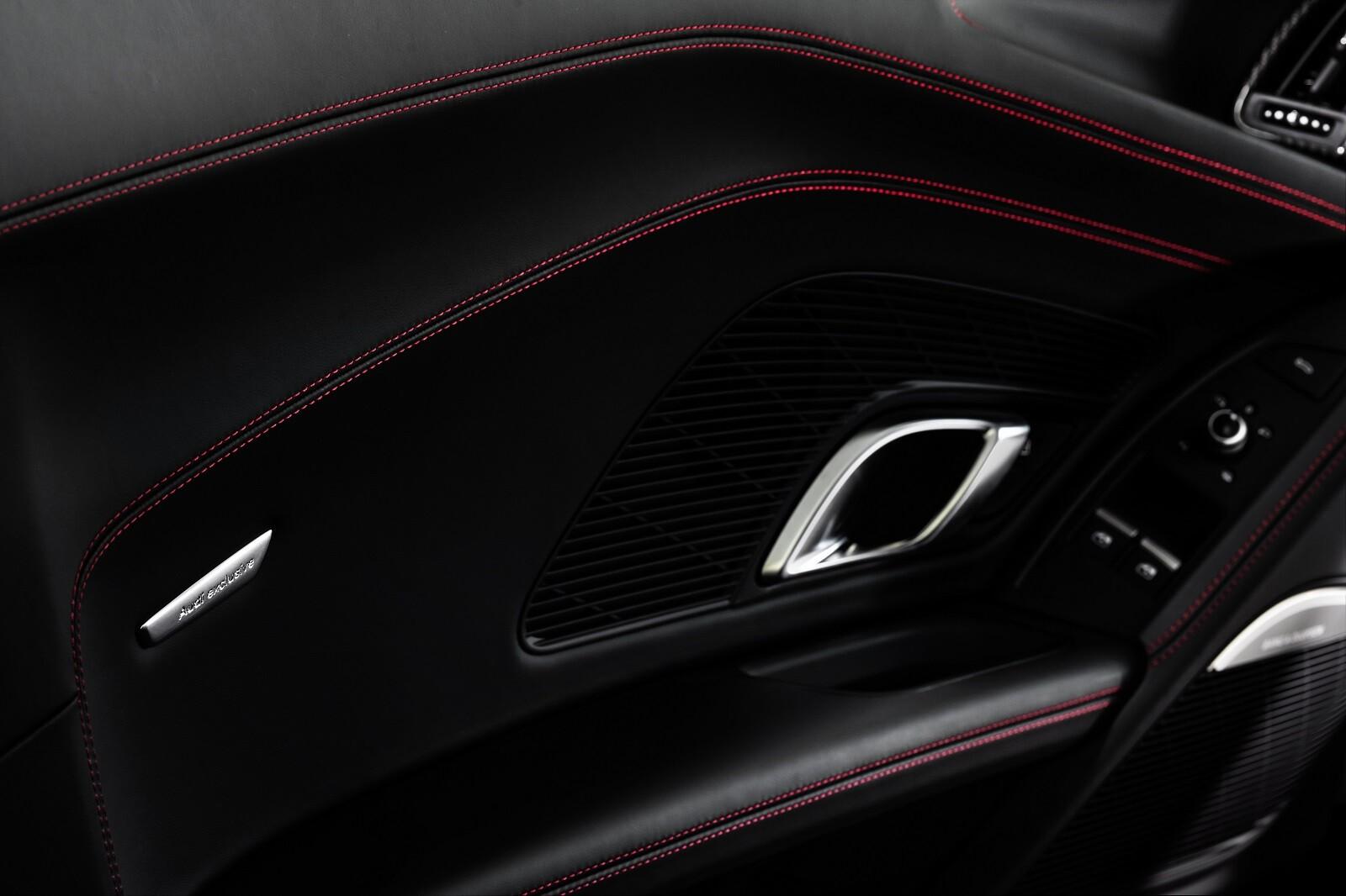 Foto de Audi R8 RWD Panther Edition (21/30)