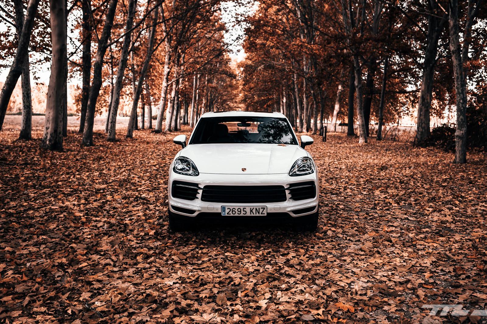 Foto de Porsche Cayenne S (prueba) (2/33)