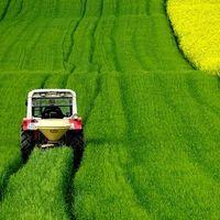 ¿Qué trabajadores están obligados a cotizar por el régimen agrario de la Seguridad Social?