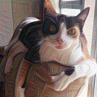 Deep Dreams vuelve a estar online, aplícale los filtros de la IA de Google a tus fotos