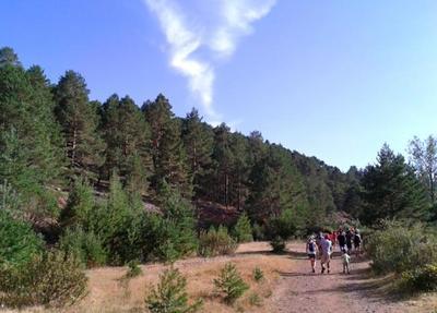 Consejos para pequeños excursionistas