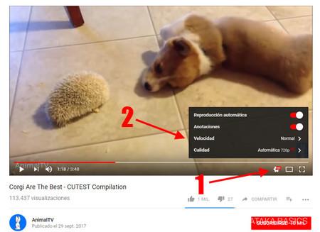 Youtubew