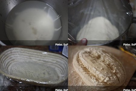 Pan de masa madre. Pasos
